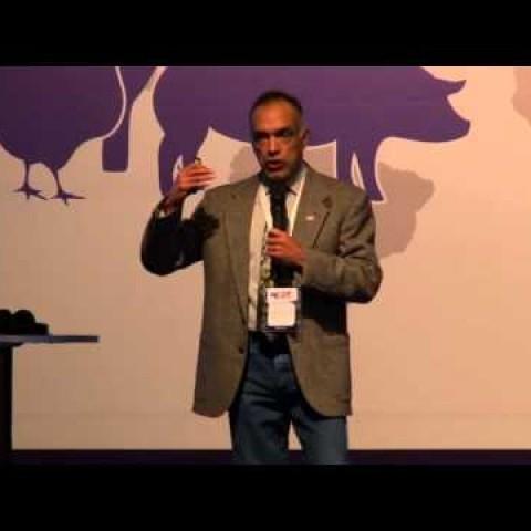 SINA Biofarma, PhD. Alfredo Dicostanzo: Detalles prácticos para una recría exitosa