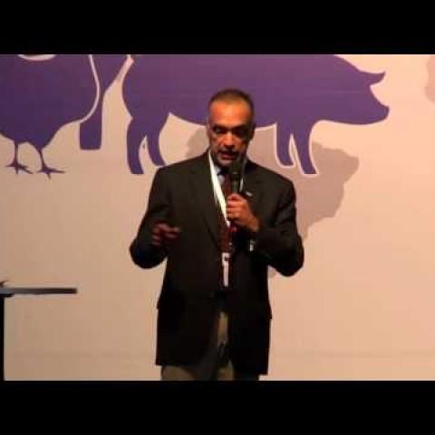 SINA Biofarma, Phd. Alfredo Dicostanzo: Utilización de la recría