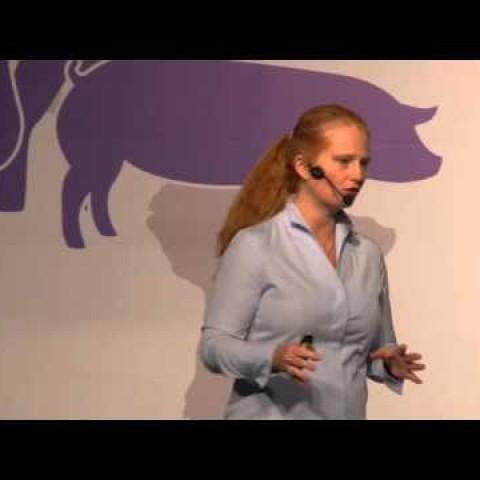 SINA Biofarma, MSc. Verena Starkl: Micotoxinas en producción porcina